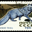 Vintage postage stamp. Arctic Blue Fox. — Stock Photo