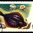 Stock Photo: Vintage postage stamp. Fish Flounder.