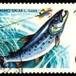 Vintage postage stamp. Fish Salmon. — Stock Photo