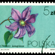 Vintage postage stamp. Flower Clematis Lanuginosa. — Stock Photo