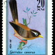 Vintage postage stamp. Garrulax canorus. — Stock Photo