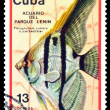 Vintage postage stamp. Pterophyllum scalare. — Stock Photo #40971601