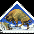 Vintage  postage stamp. Europian  Bison. — Stock Photo #42804981