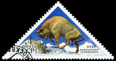 Vintage  postage stamp. Europian  Bison. — Stock Photo