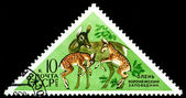 Vintage  postage stamp. Deer and Fawns. — Stock Photo