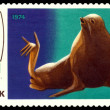 Vintage  postage stamp. Fur Seal. — Stock Photo #44297695