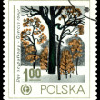 Vintage postage stamp. English Oak. — Stock Photo