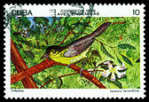 Vintage  postage stamp.  Yellow-headed Warbler. — Stock Photo
