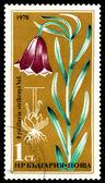 Vintage  postage stamp. Flower Fritillaria Stribrnyi. — Stock Photo