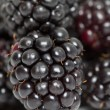 Stock Photo: Macro Blackberry