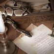 Vintage still life with snake and candle - Stock Photo