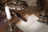 Vintage still life with snake and candle — Stock Photo