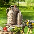 Rural still life with basket of vegetables — Stock Photo
