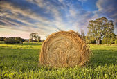 Bale of Hay. HDR — Stock Photo