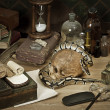 Alchemy still life with Royal Python — Stock Photo #19802495