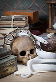Two snakes with human skull — Stock Photo