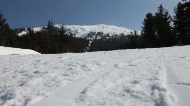 Ski de descente — Vidéo
