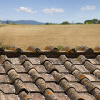 Roofs with landscape — Foto de Stock