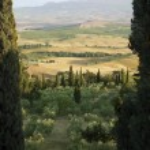 Tuscany Landscape with cypress — Stock Photo