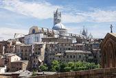 Sienna Skyline with Duomo. Tuscany Italy — Stock Photo