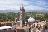 Duomo of Siena, Tuscany, Italy — Stock Photo
