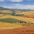 Rural landscape, Italy — Stock Photo