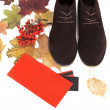Black male shoes. Autumn theme — Stock Photo