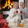 Stock Photo: Mature couple celebrating Christmas