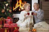 Senior couple celebrating Christmas — Stock Photo