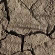 Stock Photo: Close-up of arid cracked earth