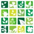 Collection of vector leaves icons — Stock Vector