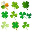 Vector shamrock collection - Imagen vectorial