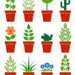 Vector set of plants in pots — Stock Vector