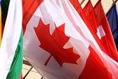 Einige flags — Stockfoto