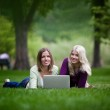 Young Women Using Laptop in Park — Stock Photo #12747428