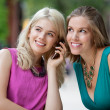 Stock Photo: Women Using A Mobile Phone