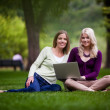 Stock Photo: Young Women Using laptop
