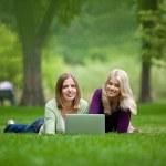 Women Using Laptop In Park — Stock Photo