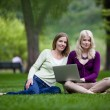 Young Women Using laptop — Stock Photo
