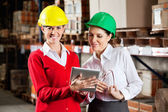 Female Supervisor With Colleague At Warehouse — Stock Photo