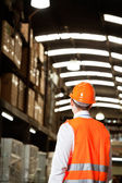 Rear View Of Male Supervisor At Warehouse — Stock Photo
