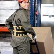 Stock Photo: Warehouse Worker Pushing Handtruck