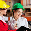 Stock Photo: Female Supervisor And Colleague Working Together