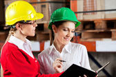 Female Supervisor And Colleague Working Together — Stock Photo