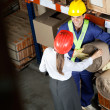 Stock Photo: Female Supervisor Communicating With Foreman