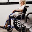 Elderly Woman On Wheelchair - Stock Photo