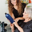 Hairdresser Advising Hair Color To Customer - Foto Stock