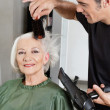 Hairdresser Blow Drying Woman&#039;s Hair - Stockfoto