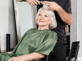 Woman Having Hair Cut At Salon — Stock Photo