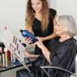 Stock Photo: Client And Hairdresser Choosing Hair Color